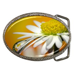 Daisy With Drops Belt Buckle (Oval)