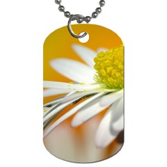 Daisy With Drops Dog Tag (two Sided)