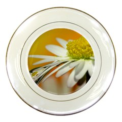 Daisy With Drops Porcelain Display Plate