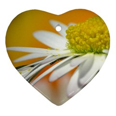 Daisy With Drops Heart Ornament (Two Sides)