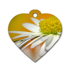 Daisy With Drops Dog Tag Heart (One Sided)