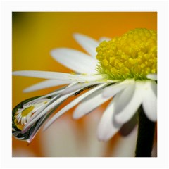 Daisy With Drops Glasses Cloth (medium, Two Sided)