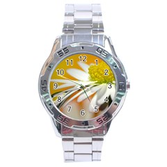Daisy With Drops Stainless Steel Watch (Men s)