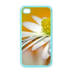 Daisy With Drops Apple iPhone 4 Case (Color)