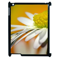 Daisy With Drops Apple Ipad 2 Case (black)