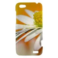 Daisy With Drops HTC One V Hardshell Case