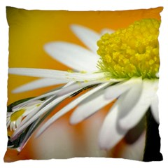 Daisy With Drops Large Cushion Case (Two Sided)