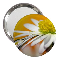 Daisy With Drops 3  Handbag Mirror
