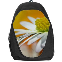 Daisy With Drops Backpack Bag