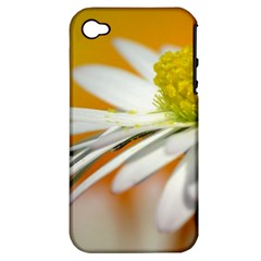 Daisy With Drops Apple iPhone 4/4S Hardshell Case (PC+Silicone)