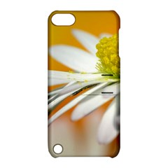 Daisy With Drops Apple iPod Touch 5 Hardshell Case with Stand