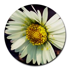 Daisy 8  Mouse Pad (Round)