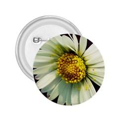 Daisy 2 25  Button