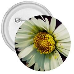 Daisy 3  Button