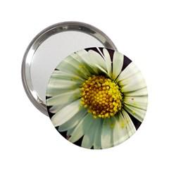 Daisy Handbag Mirror (2 25 )
