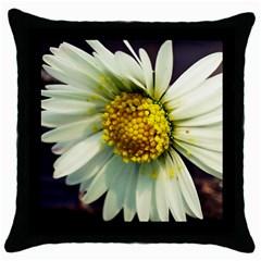 Daisy Black Throw Pillow Case