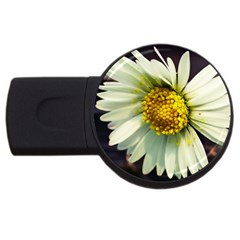 Daisy 1GB USB Flash Drive (Round)