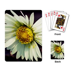 Daisy Playing Cards Single Design