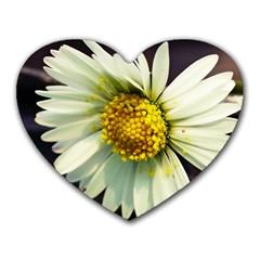Daisy Mouse Pad (Heart)