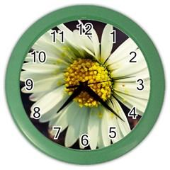 Daisy Wall Clock (Color)