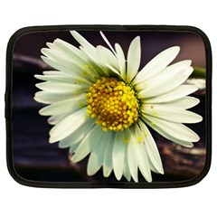 Daisy Netbook Case (xl)