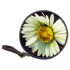 Daisy Cd Wallet