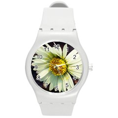 Daisy Plastic Sport Watch (medium)