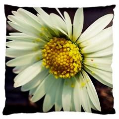 Daisy Large Cushion Case (Single Sided)