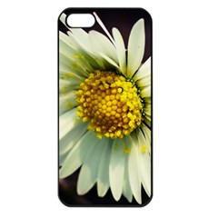 Daisy Apple Iphone 5 Seamless Case (black)
