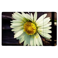 Daisy Apple iPad 3/4 Flip Case