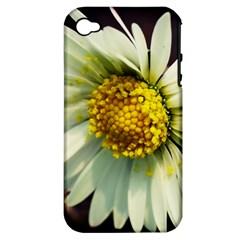 Daisy Apple Iphone 4/4s Hardshell Case (pc+silicone)