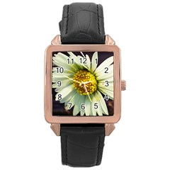Daisy Rose Gold Leather Watch
