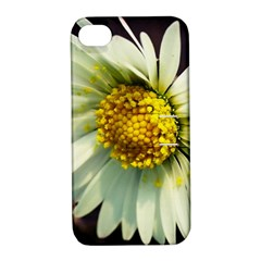 Daisy Apple iPhone 4/4S Hardshell Case with Stand