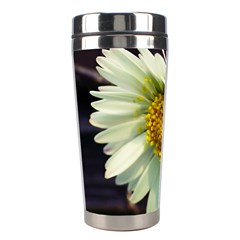 Daisy Stainless Steel Travel Tumbler