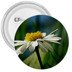 Daisy 3  Button