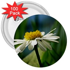 Daisy 3  Button (100 pack)