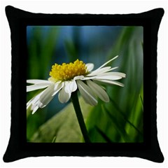 Daisy Black Throw Pillow Case