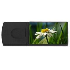Daisy 2GB USB Flash Drive (Rectangle)