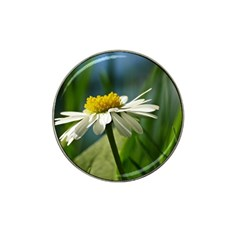 Daisy Golf Ball Marker 4 Pack (for Hat Clip)