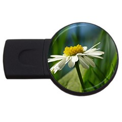 Daisy 4GB USB Flash Drive (Round)