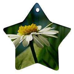 Daisy Star Ornament (two Sides)