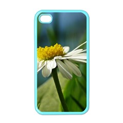 Daisy Apple iPhone 4 Case (Color)