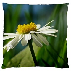 Daisy Large Cushion Case (Two Sided)