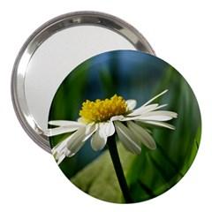 Daisy 3  Handbag Mirror