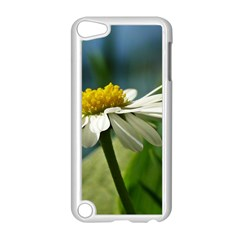 Daisy Apple Ipod Touch 5 Case (white)