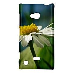 Daisy Nokia Lumia 720 Hardshell Case