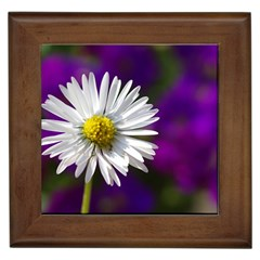 Daisy Framed Ceramic Tile