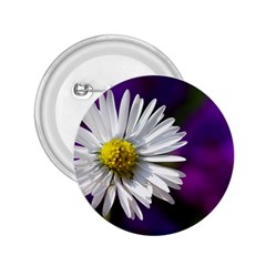 Daisy 2.25  Button
