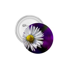 Daisy 1.75  Button