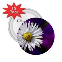 Daisy 2.25  Button (10 pack)